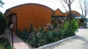 Анапа Афалина