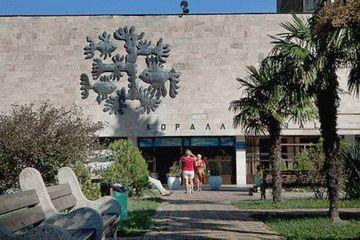 Санаторий Коралл в Сочи