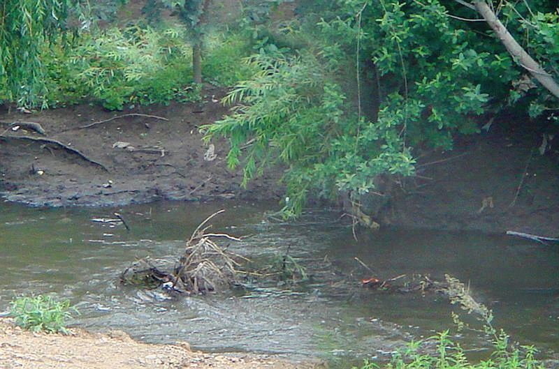 Река Дерекойка