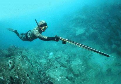 Подводная охота в Анапе