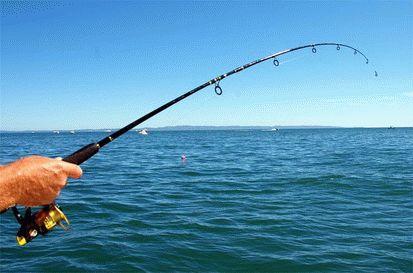 Морские прогулки и рыбалка в Анапе
