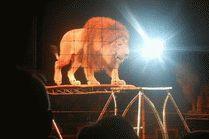 Анапа цирк Максимус