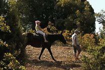Конные прогулки Сукко