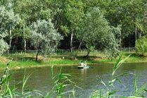 Речка Анапка