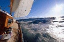 Отдых на Черном море Анапа