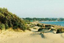 Дюны на пляже Анапы