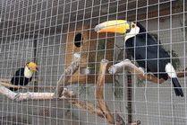 Зоопарк - Анапа