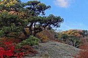 Осенняя Анапа