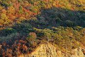 Осень в Анапе