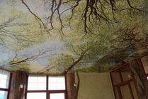 Натяжные потолки в Анапе