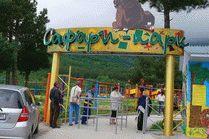 Cафари-парк в Геленджике