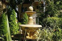 Фото Старый парк