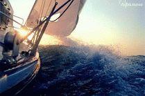 Яхта в Анапе - Афалина