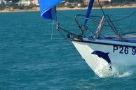 Яхта Афалина в Анапе