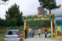 Фото Сафари-парка в Геленджике