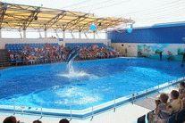Голубицкая - дельфинарий