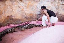 Станица Голубицкая крокодиловая ферма