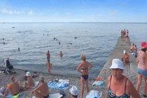 Адлер - пляж Чайка