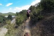 Конные прогулки Анапа