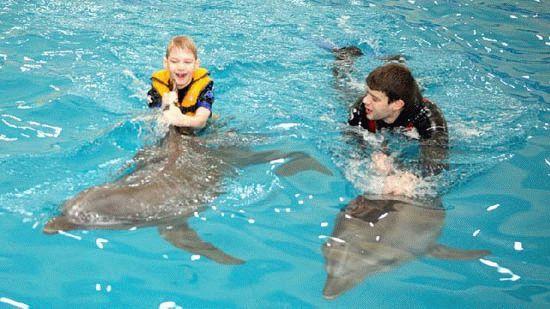 Дельфинотерапия в Анапе