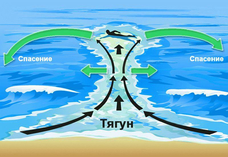 Тягун на море