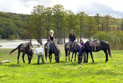 Конные прогулки - Анапа