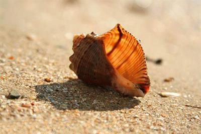 Песок Анапы