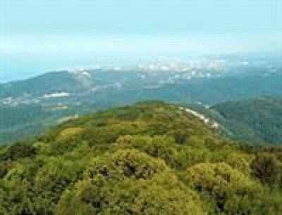 Гора Ахун в Сочи