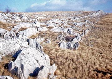 Гора Караби-Яйла