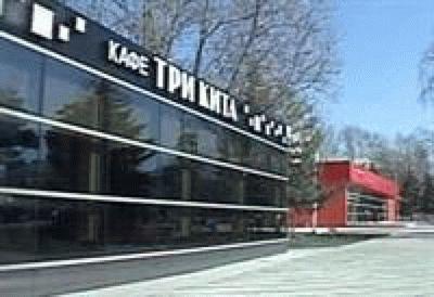 Кафе «Три кита» в Анапе