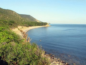 Отдых дикарем на Черном море