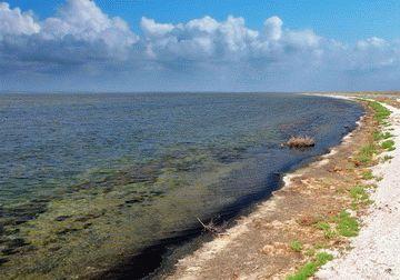 Озеро Сиваш в Крыму