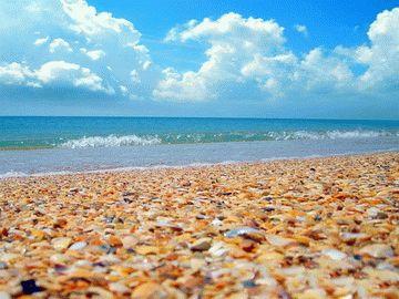 Песчаные пляжи Черного моря