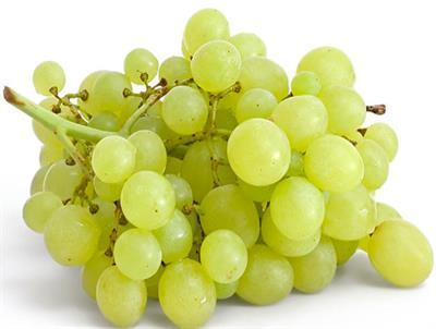 Виноградолечение в Анапе
