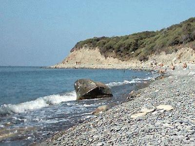 Фото пляжа на Утрише