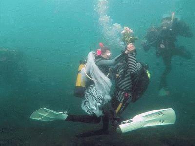 Подводная свадьба в Анапе