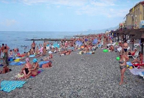 пляж чайка адлер фото и отзывы