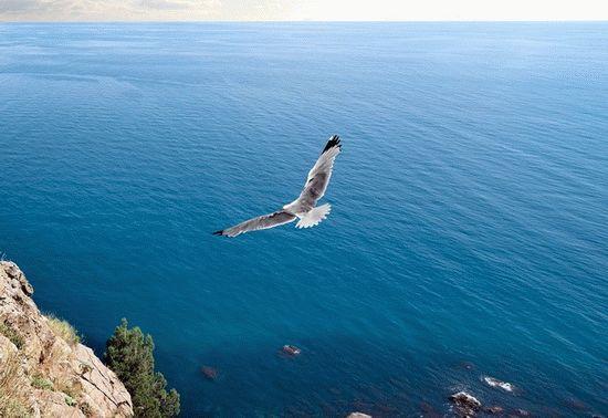 Лечение морским воздухом