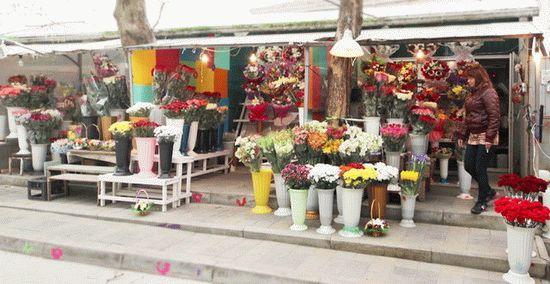 Цветочный павильон в Анапе
