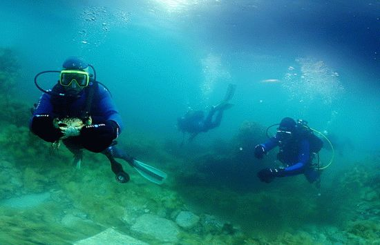 Подводные красоты Утриша