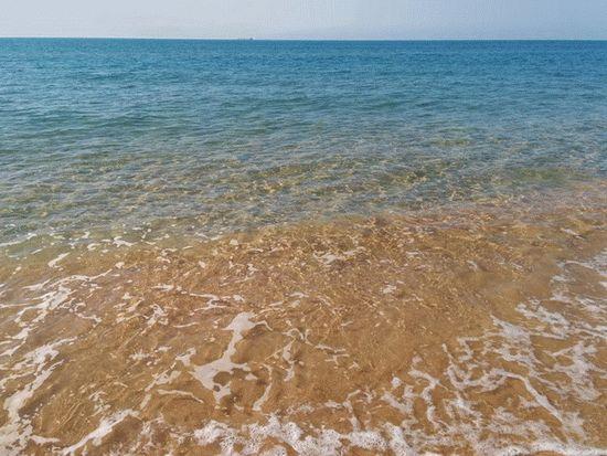 Чистая вода витязевких пляжей