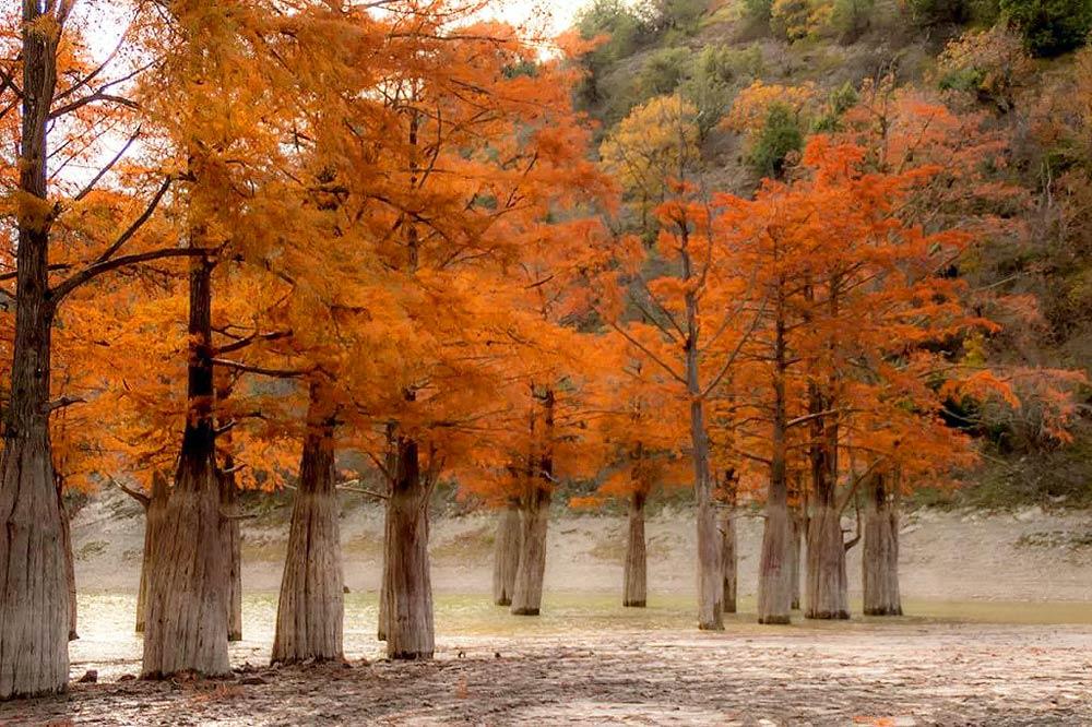 Осень в долине Сукко на курорте Анапа