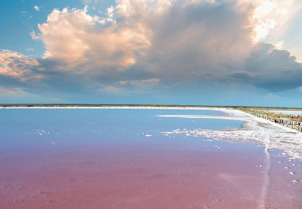 Озеро Сасык в Крыму