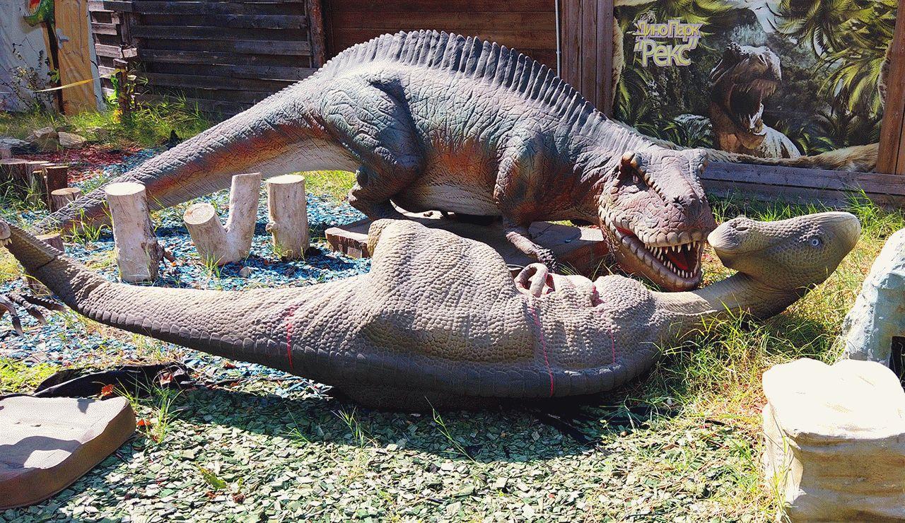 Видео о Парке динозавров