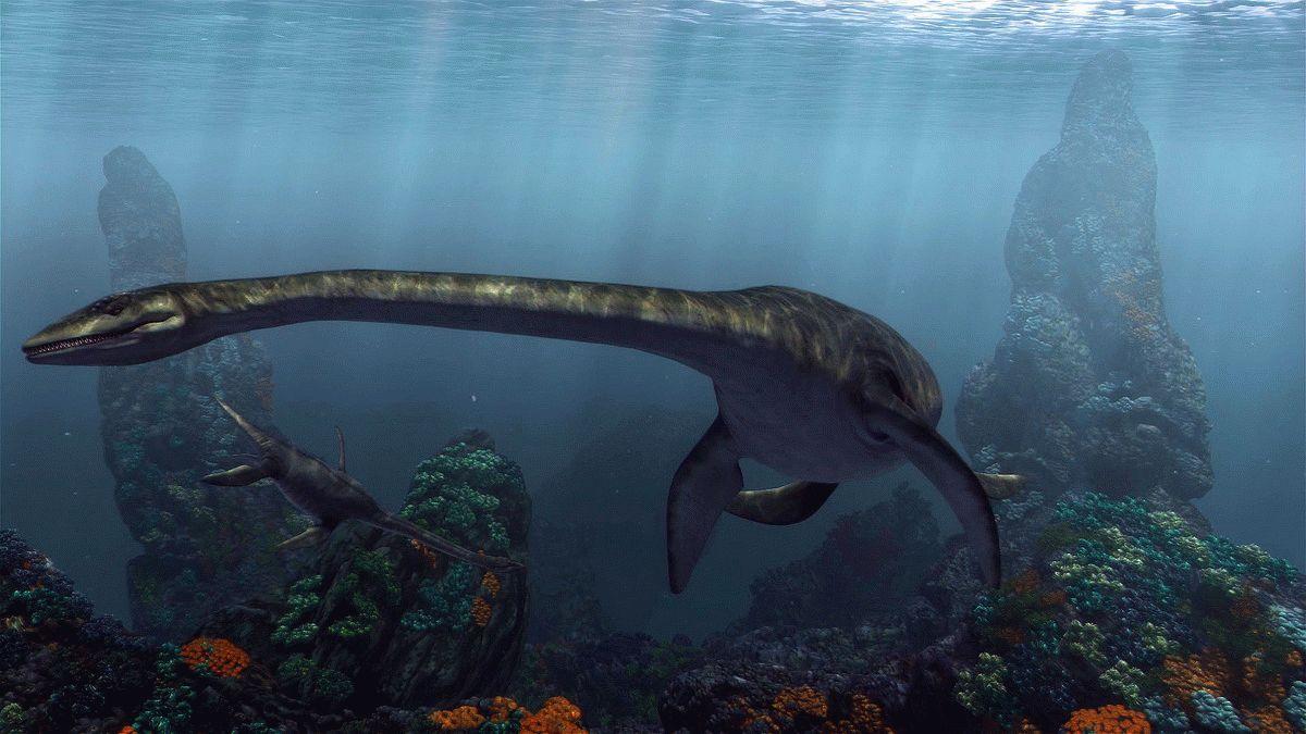 Доисторические обитатели морей