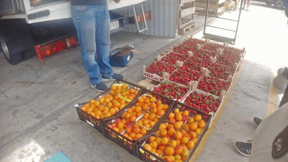 Ягоды и абрикосы