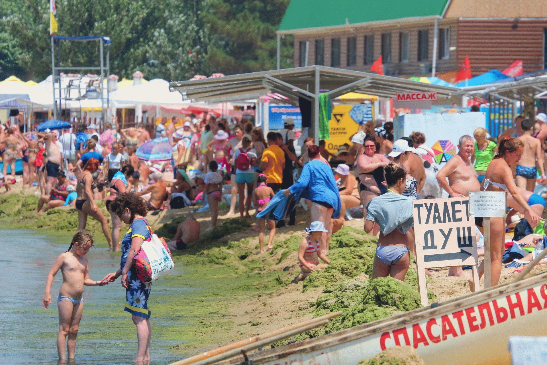 Водоросли на пляже в Анапе