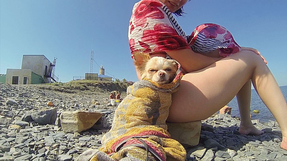 С собакой на отдыхе
