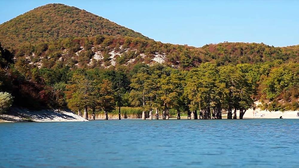 Кипарисы в Сукко осенью