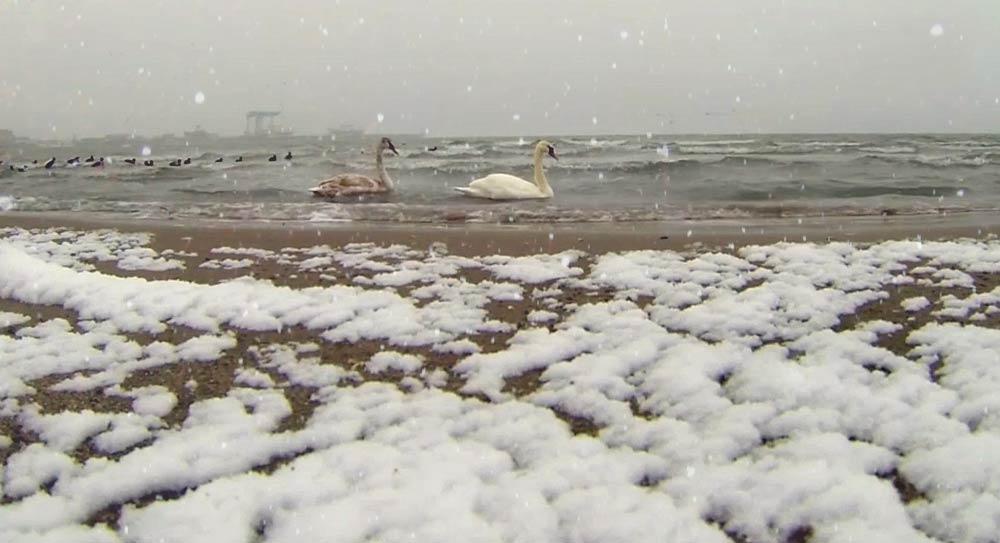 Снег в Анапе